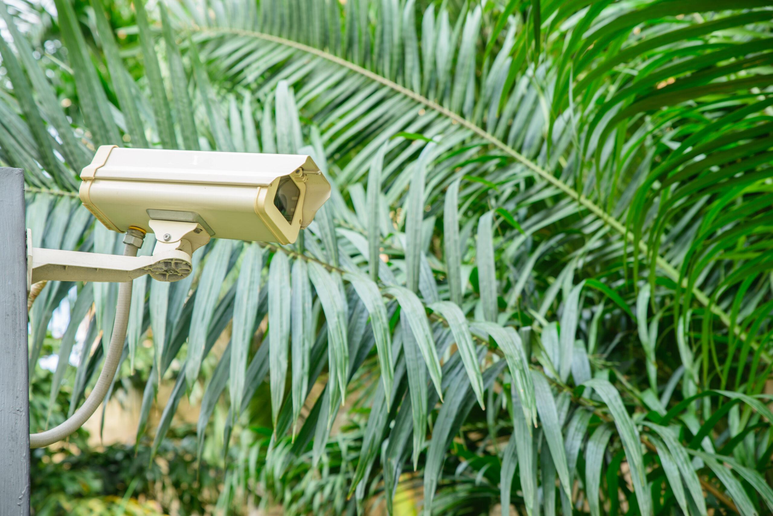 Pentingnya Pemeliharaan CCTV